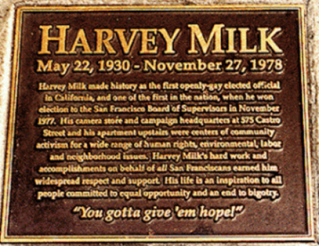 harvey milks contributions to gay rights
